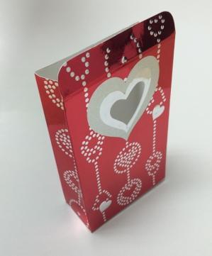 袋型の紙箱.jpg