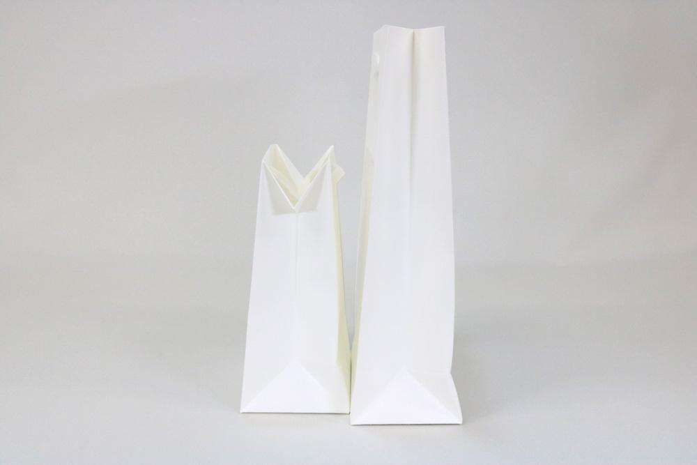 タント 表面加工なし、箔押艶金1色の別注紙袋の側面画像