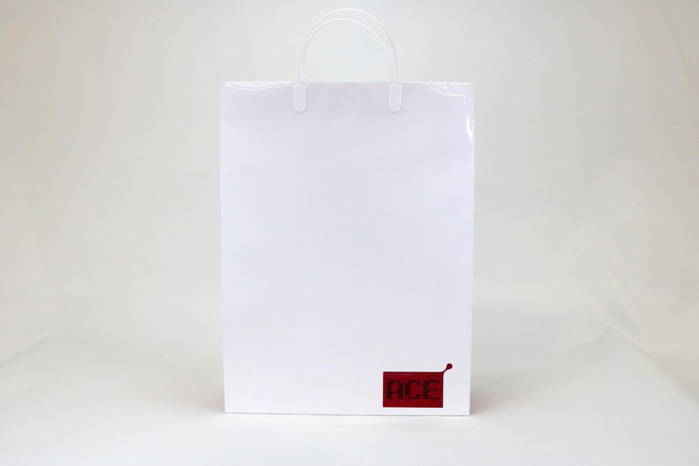 コート紙表面グロスPP貼り、オフセット印刷2色の別注紙袋の正面画像